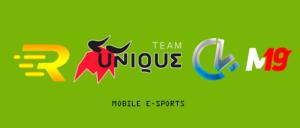 Киберспортивные организации в мобильном гейминге